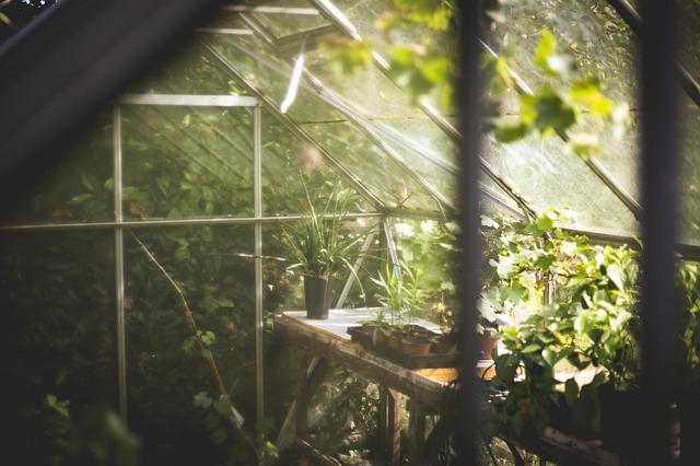 Greenhouse 691704 640