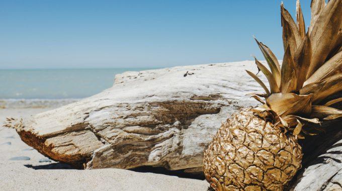 Pineapple Supply Co Irk9KPCWZoY Unsplash